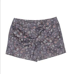 Ann Taylor LOFT Printed Dressy Shorts